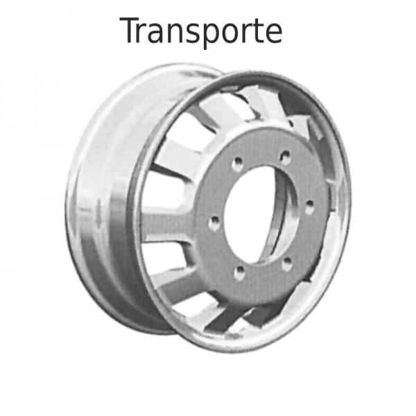TRASPORTE1